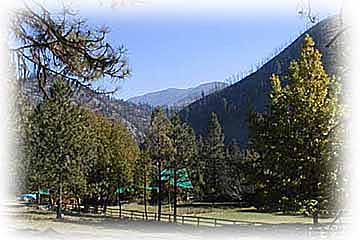 allison ranch